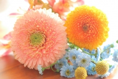 10Sugar flower